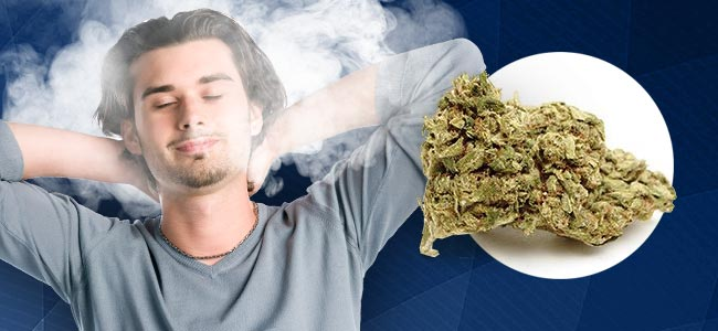 What Are The Effects Of An Indica