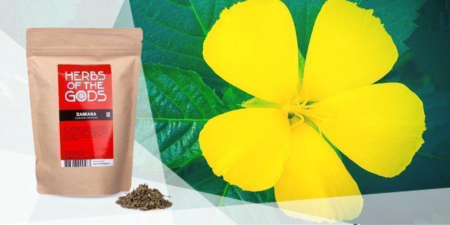 Damiana - Vape Herbs For A Good Mood