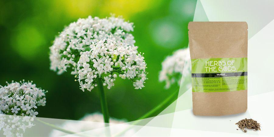 Valerian - Vape Herbs For A Good Mood