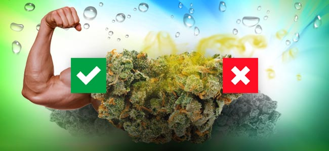 THE PROS AND CONS OF WATER CURING