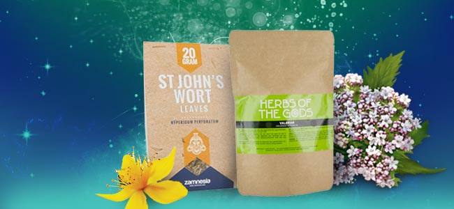 St John's Wort And Valerian