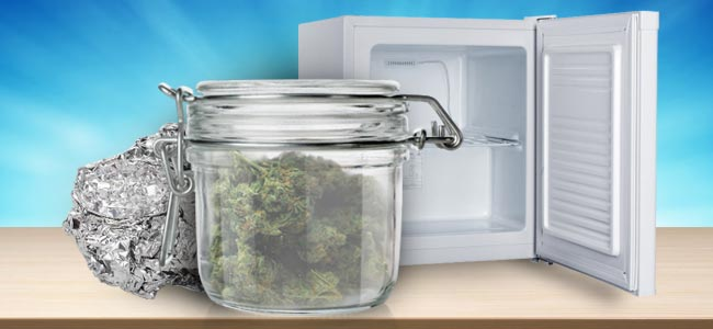 FREEZE YOUR WEED FOR LONG-TERM STORAGE