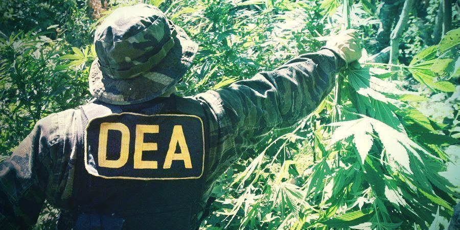 Drogenkrieg