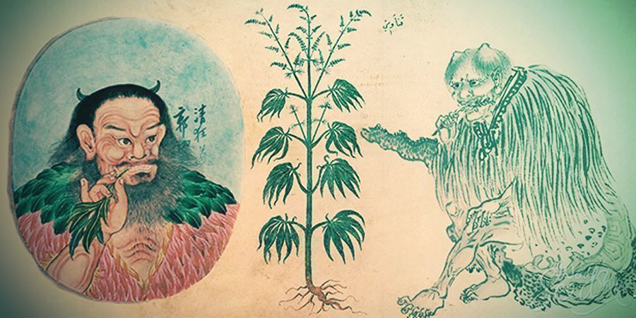 Early medical use of cannabis in China