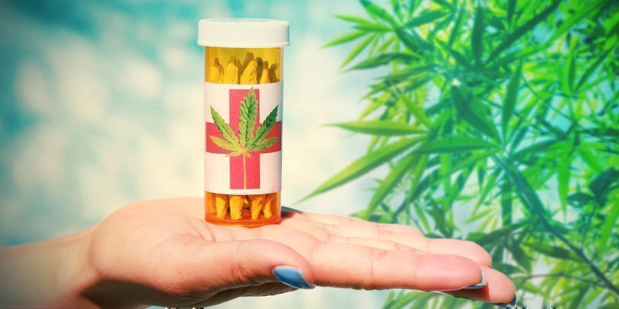 Cannabis Kollektive: Gemeinnützige Organisationen