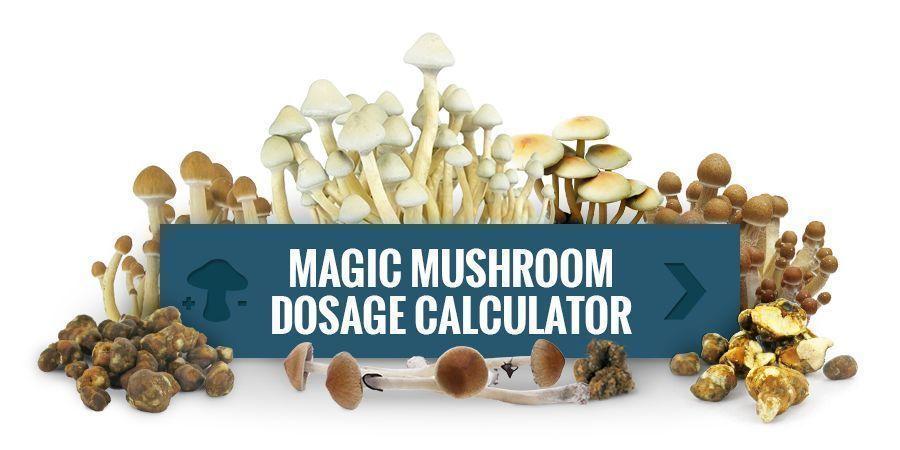 Magic Mushroom Dosage Calculator