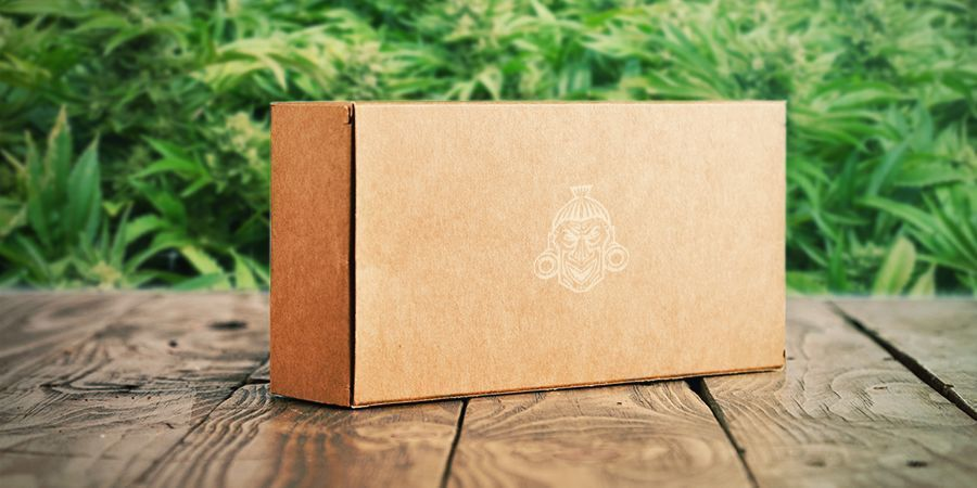 Free Shipping On Cannabis Seeds Zamnesia