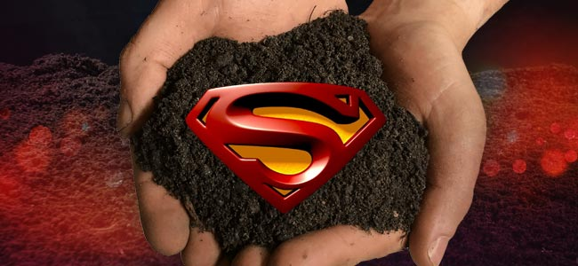 What Is Organic Super Soil?