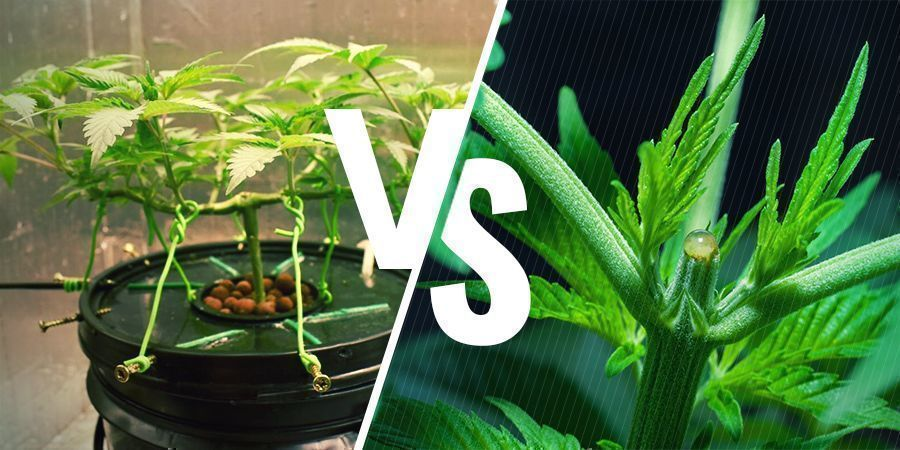 Is There a Difference Between LST and HST?