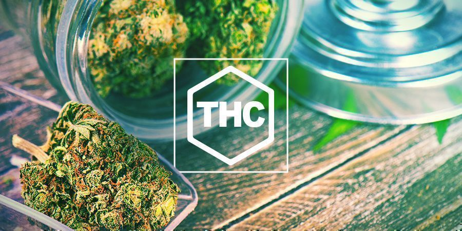 THC In Cannabis