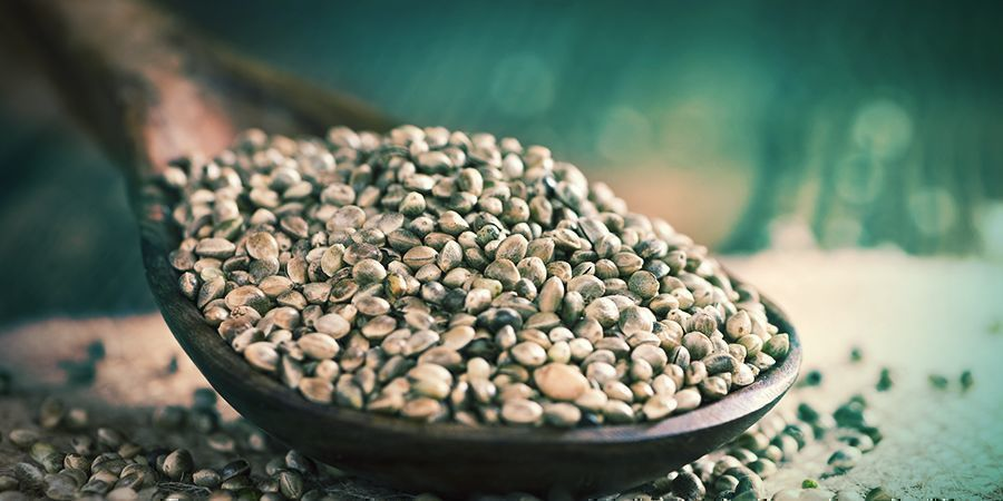 What Are Regular Cannabis Seeds And Who Are They For?