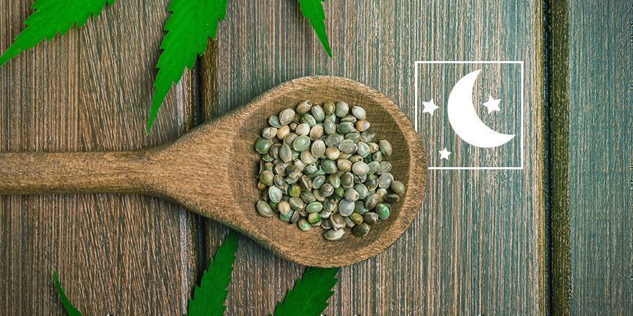 Sind feminisierte Cannabissamen dasselbe wie photoperiodische Samen?