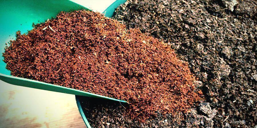 Wie Man Kokosfaser Als Substrat Verwendet