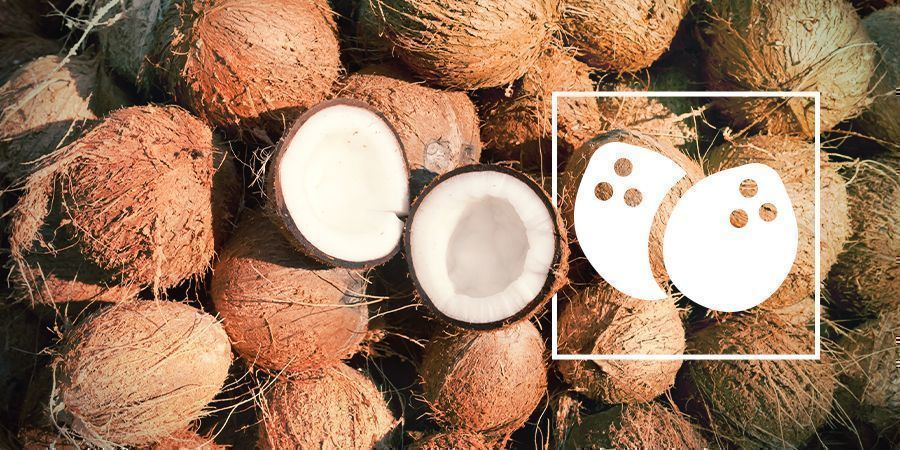 Cannabisanbau In Kokos