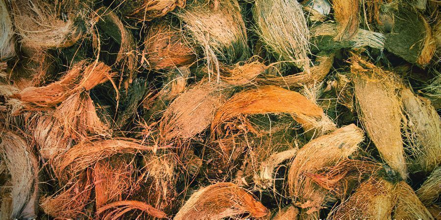 Types Of Coco Coir