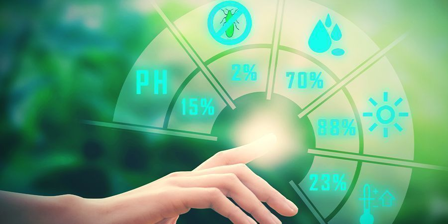 Cannabis, Magnesium, and pH Level