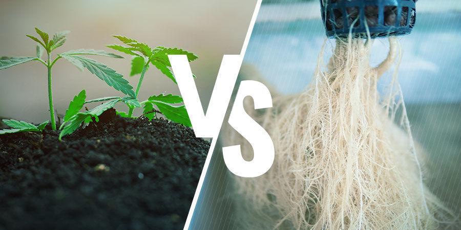NPK: Soil vs Hydroponics