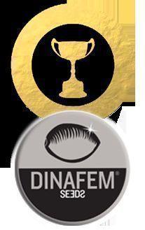 Awards Dinafem