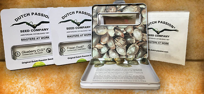 Dutch Passion packaging