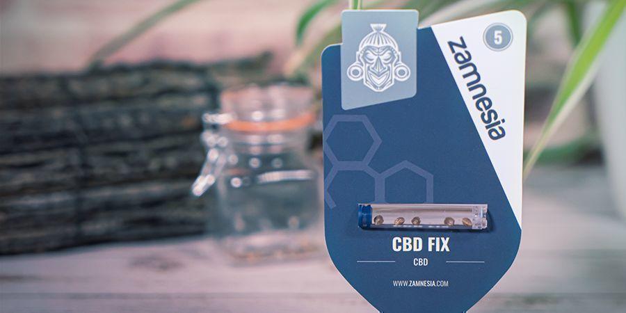 Was sind CBD-reiche Cannabissamen?
