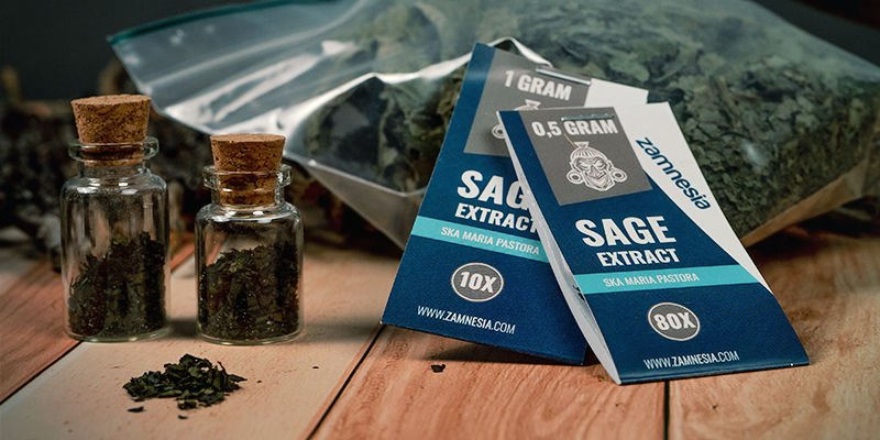 How and where can you get Salvia divinorum?