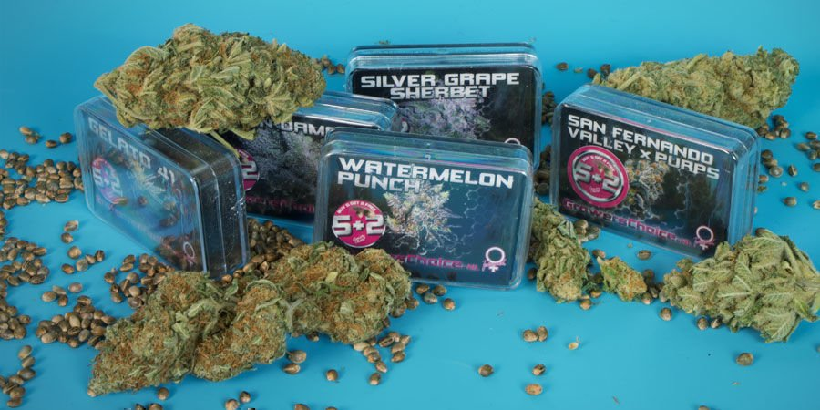 Who Are Growers Choice?