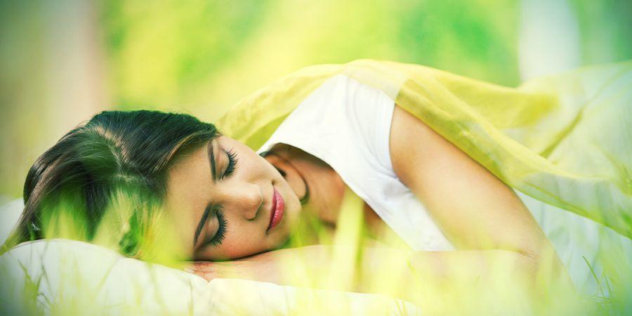Traumkräuter & Schlafstörungen