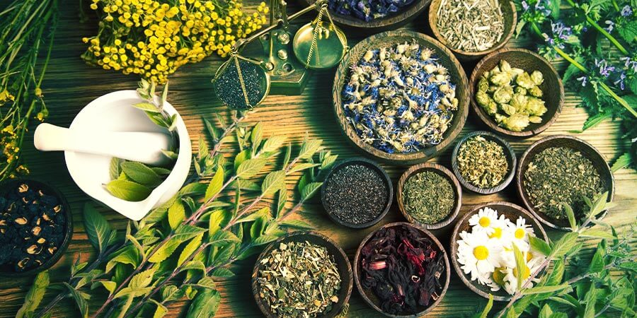 Building Natural Stamina with Herbs