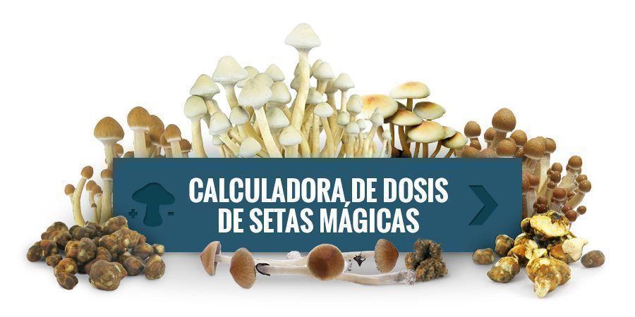 Usa Nuestra Calculadora De Dosis De Setas Mágicas