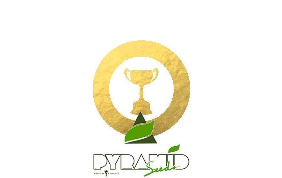 Auszeichnungen Pyramid Seeds