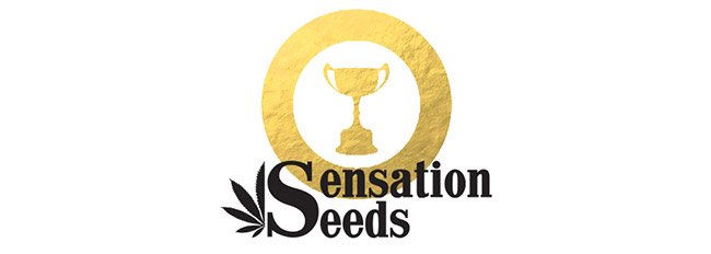 Awards Sensation Seeds