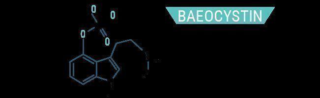 Baeocystin