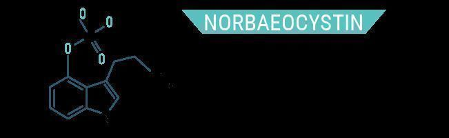 Norbaeocystin