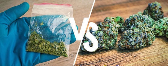 Synthetic Vs. Natural Cannabinoids: What's The Difference?