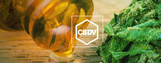 What Is CBDV?