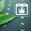 Zamnesia's Outdoor Cannabis Grow Calendar