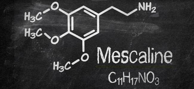 Mescaline molecula