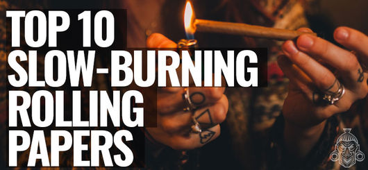 Top 10 Slowest Burning Rolling Papers!
