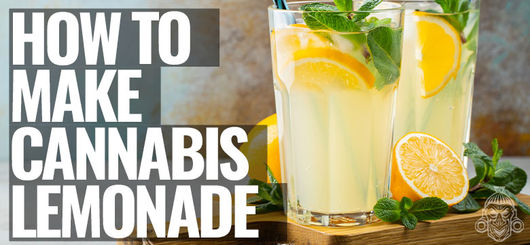 How To Make Cannabis Lemonade – Stoney By Zamnesia