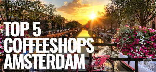 The Best Coffeeshops of Amsterdam | Amsterdam Coffeeshop Visits 2020