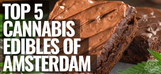 Top 5 Cannabis Edibles of Amsterdam | Amsterdam Coffeeshop Visits 2020