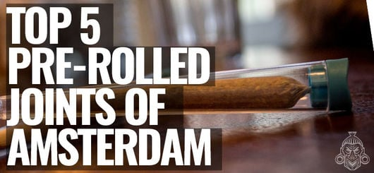 Top 5 Pre-Rolled Joints of Amsterdam | Amsterdam Coffeeshop Visits 2020