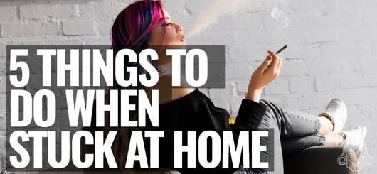 5 Things To Do As A Stoner When You're Stuck At Home | Zamnesia Tips