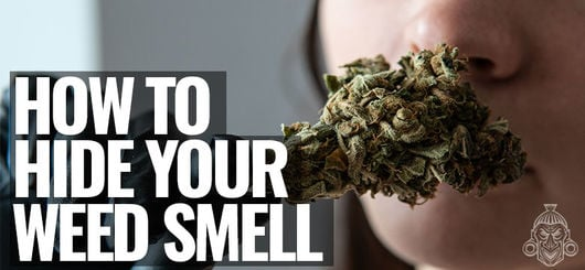 How to Hide Your Weed Smell | Growing, Storing & Smoking