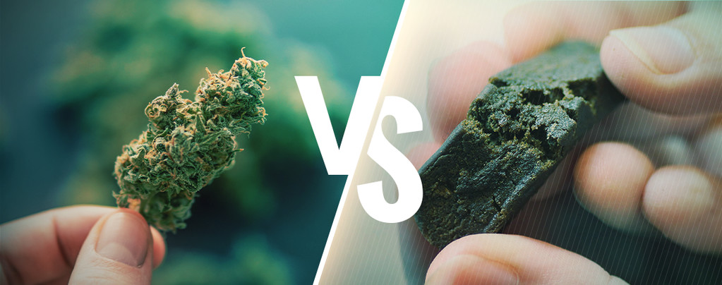 Cannabis VS Hash
