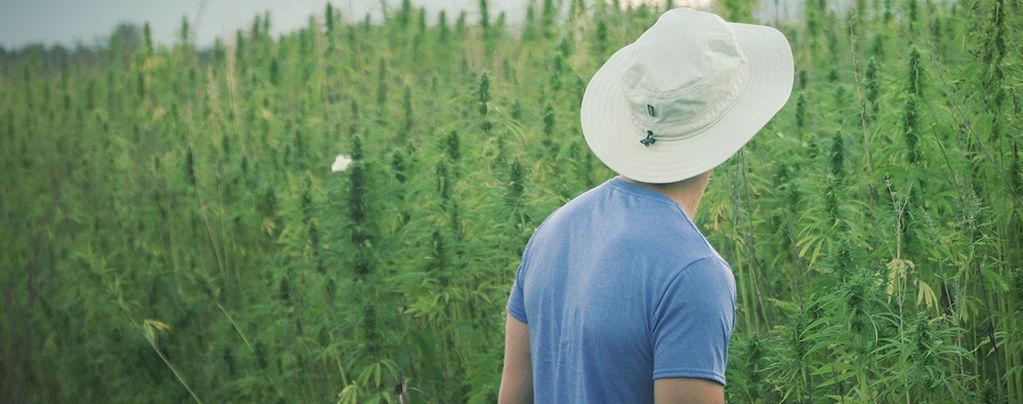 Il Famoso Pioniere Della Cannabis Franco Loja Muore A 42 Anni