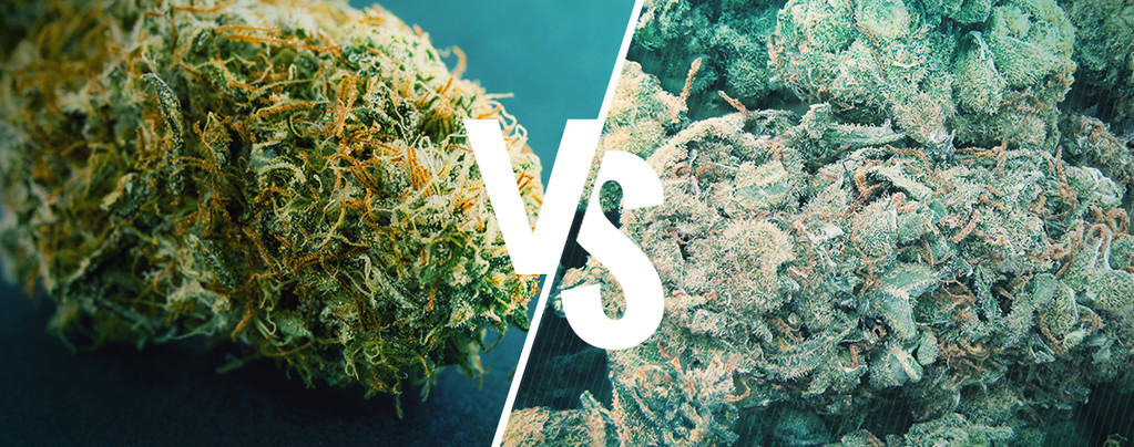 Good Vs Bad Weed