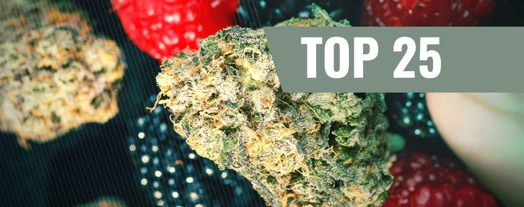 Varietà di Cannabis