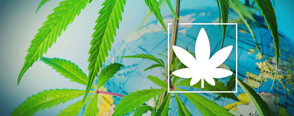 Europa Legal Cannabis Rauchen