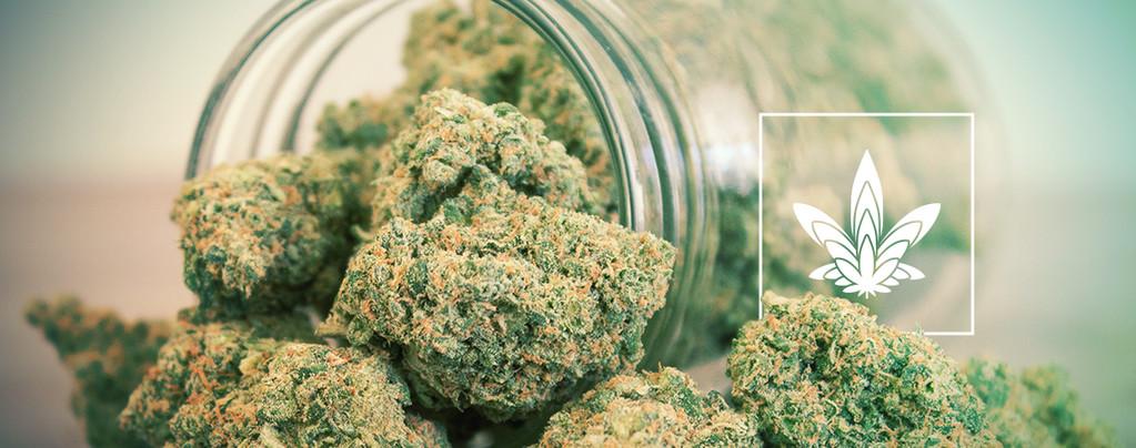 Größere Cannabis Buds
